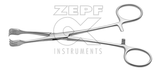 LAHEY goitre seizing forceps (54-5200-20) Medical Specialization
